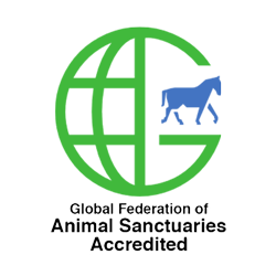 Global Federation of Animal Sanctuaries Accredited